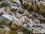 Marathon Sion - Vieilles pierres