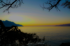 JmLuisier- Chillon 5
