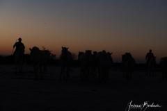 Jbo_silhouette-1-sur-2