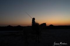 Jbo_silhouette-2-sur-2